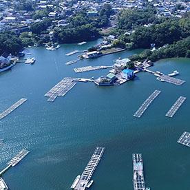 真珠筏が浮かぶ海3